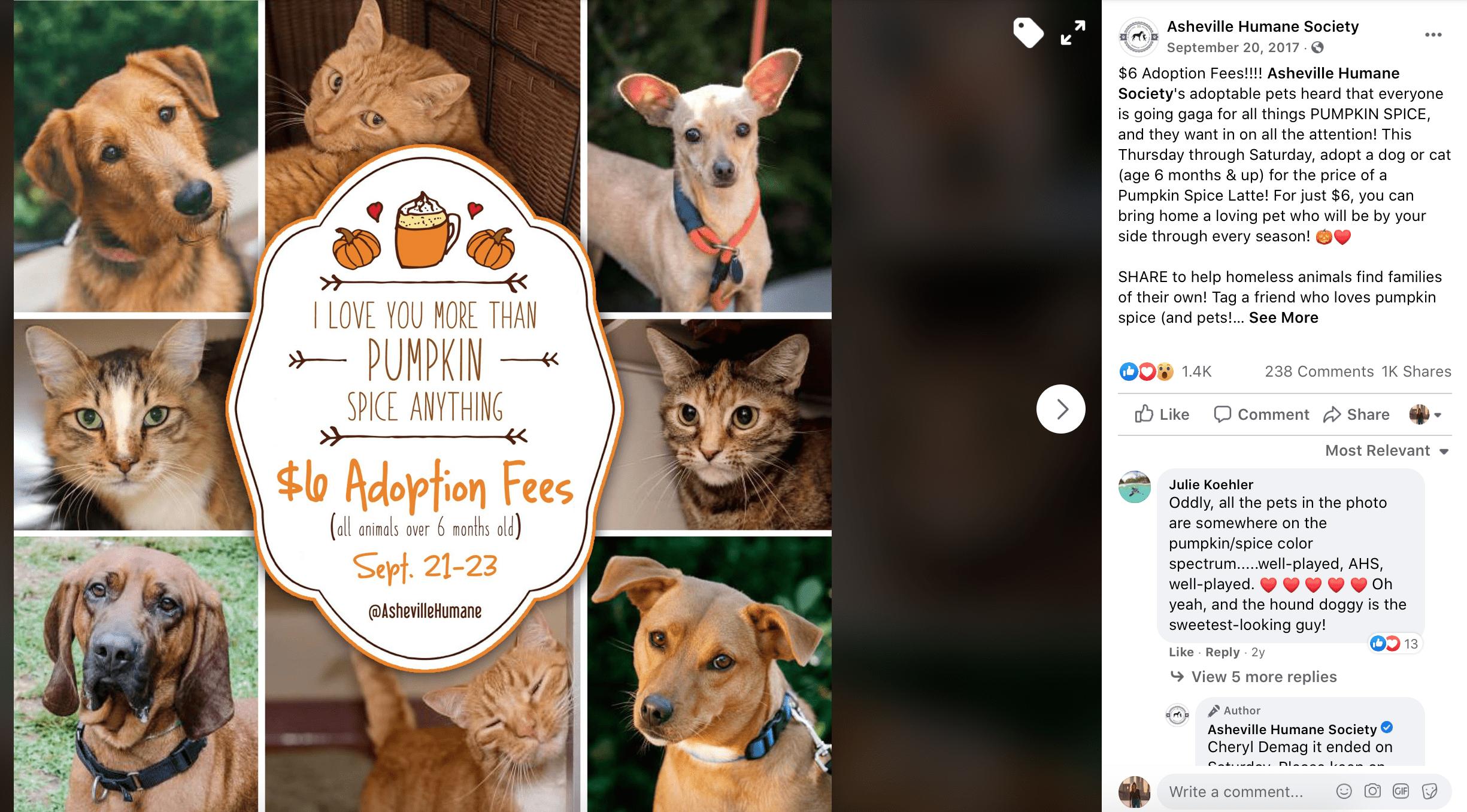 October Social Media Calendar adopt a shelter dog day